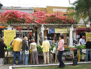 População de Vassouras comparece à Semana do Alimento Orgânico 2009 em Vassouras